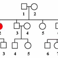 Genetische Beratung Duesseldorf