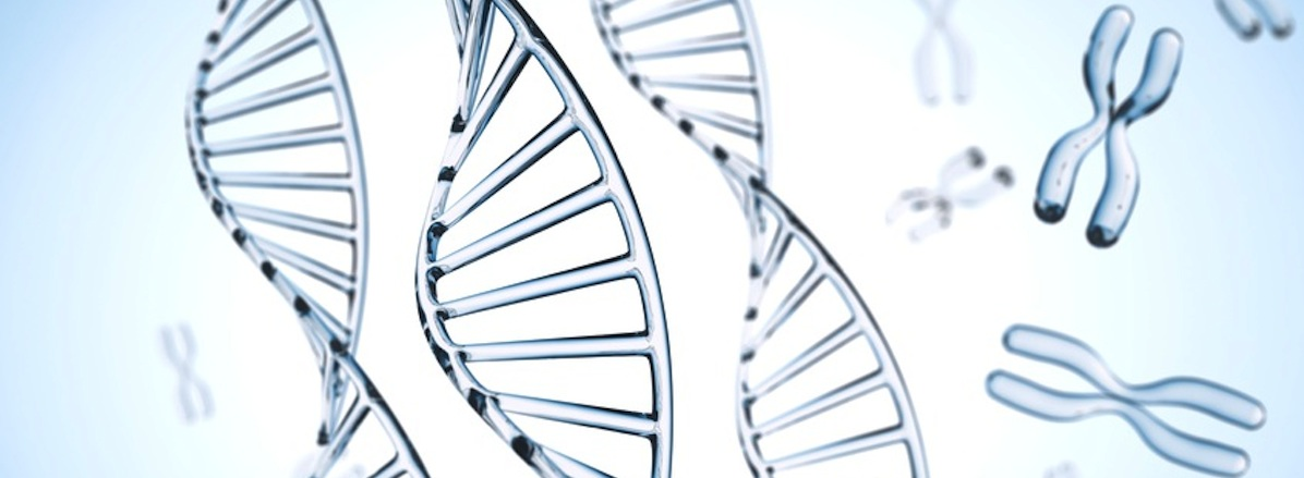DNA Test Duesseldorf praental